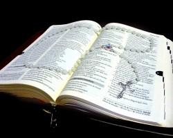 """Especial mês da Bíblia: """"Ignorar as Escrituras é ignorar a Cristo"""" - Por João Antônio Johas"""