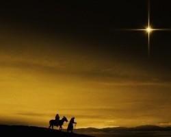 """III DOMINGO DE ADVENTO: """"Alegrai-vos sempre no Senhor! O Senhor está próximo!"""""""