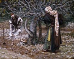 """III DOMINGO DA QUARESMA : """" Vou cavar em volta dela e colocar adubo. Pode ser que venha a dar fruto."""""""