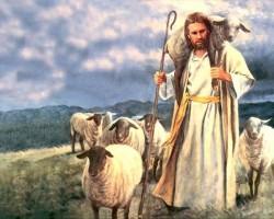 """IV DOMINGO DO TEMPO DA PÁSCOA: """"Minhas ovelhas escutam minha voz, e eu as conheço, e elas me seguem"""""""